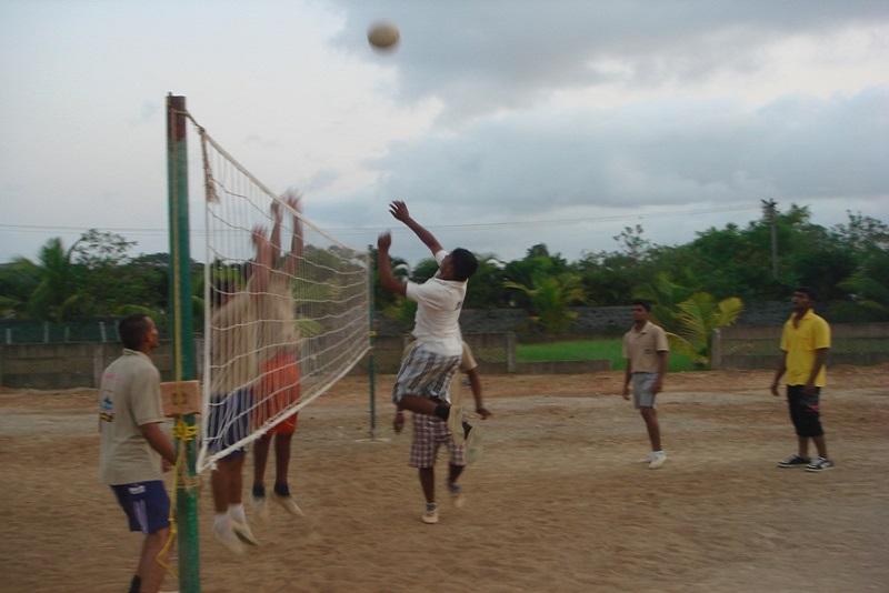 sports11